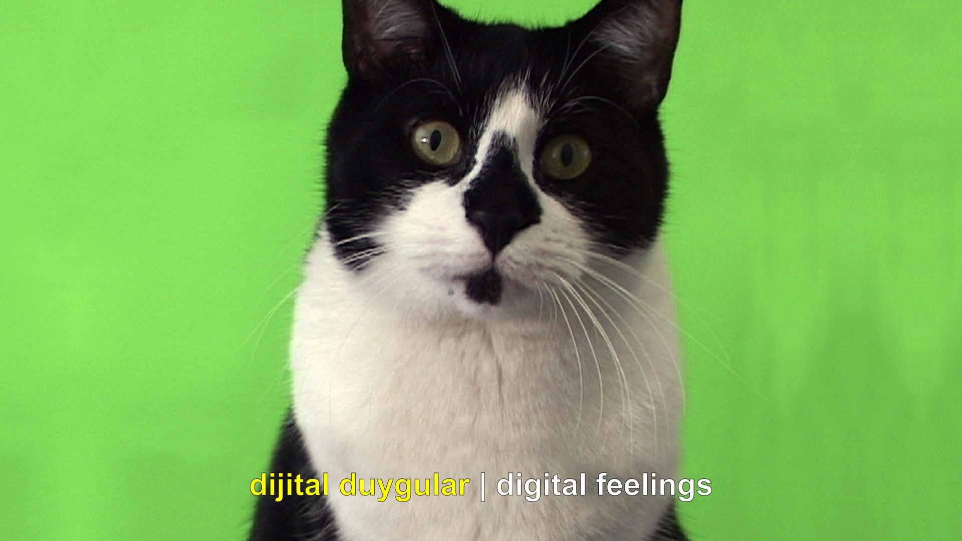 Dijital Duygular