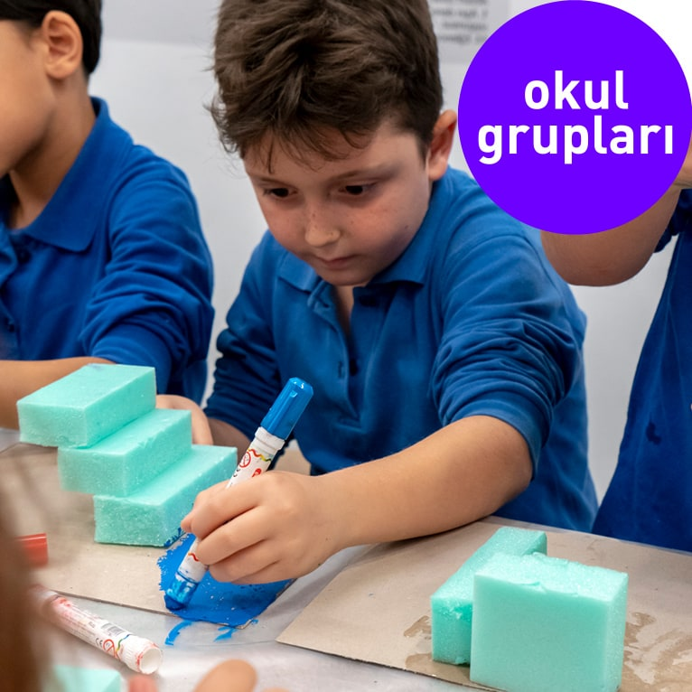 Okul Grupları