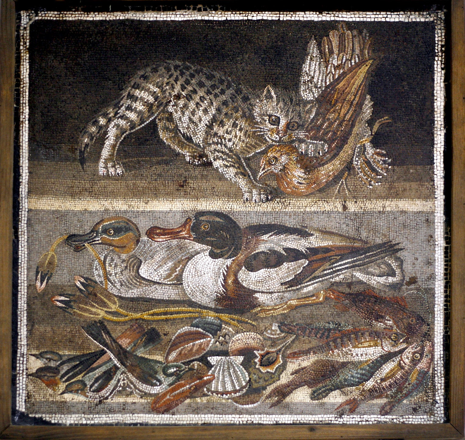 Kedi Mozaiği